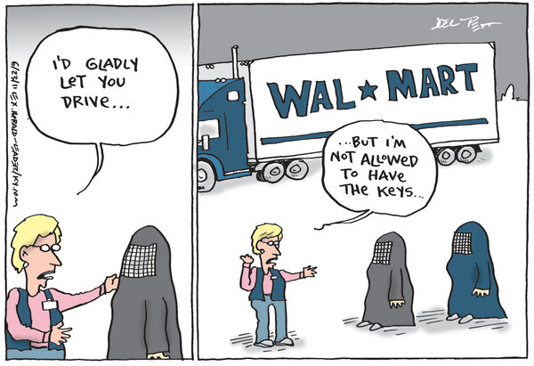 Cartoon(s) of the Week – Women vs. Corporations (and ...